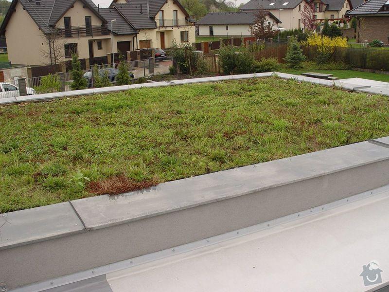 Vypletí zelené střechy cca 150 m2: s2