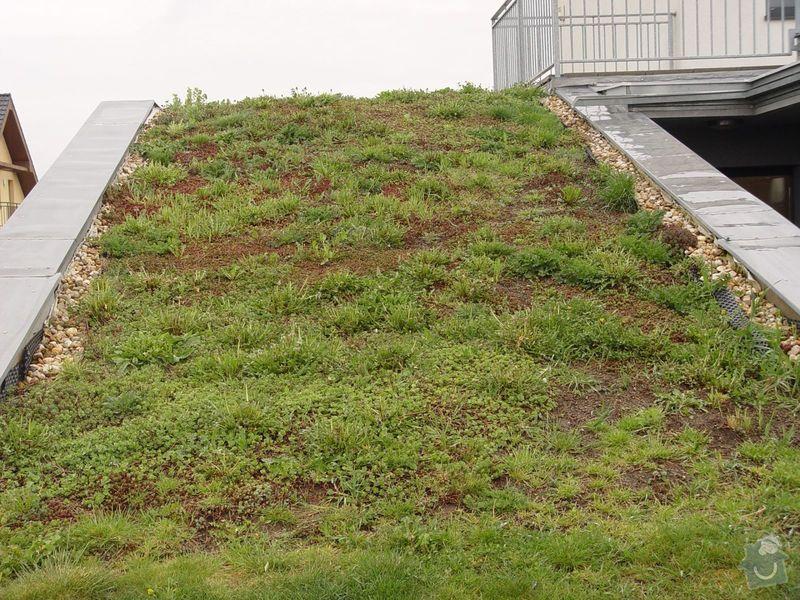 Vypletí zelené střechy cca 150 m2: s3