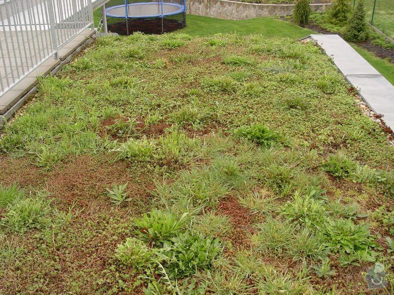 Vypletí zelené střechy cca 150 m2: s1