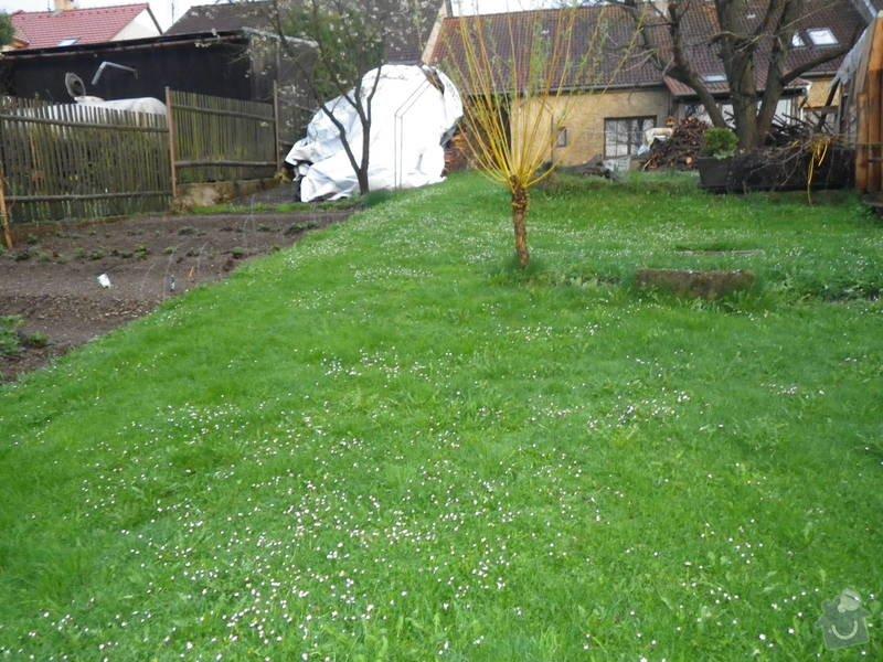 Uprava části zahrady: RIMG1168