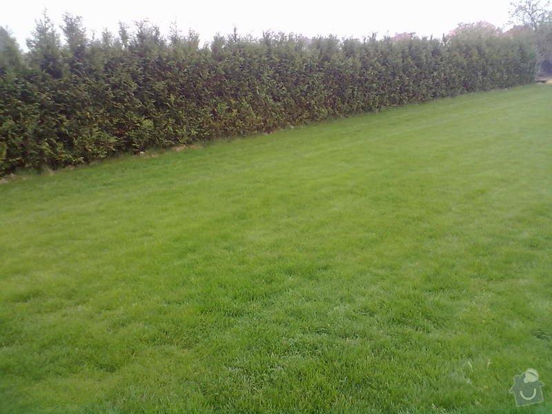 Realizace zahrady,návrh a montáž automatické závlahy: papez_049