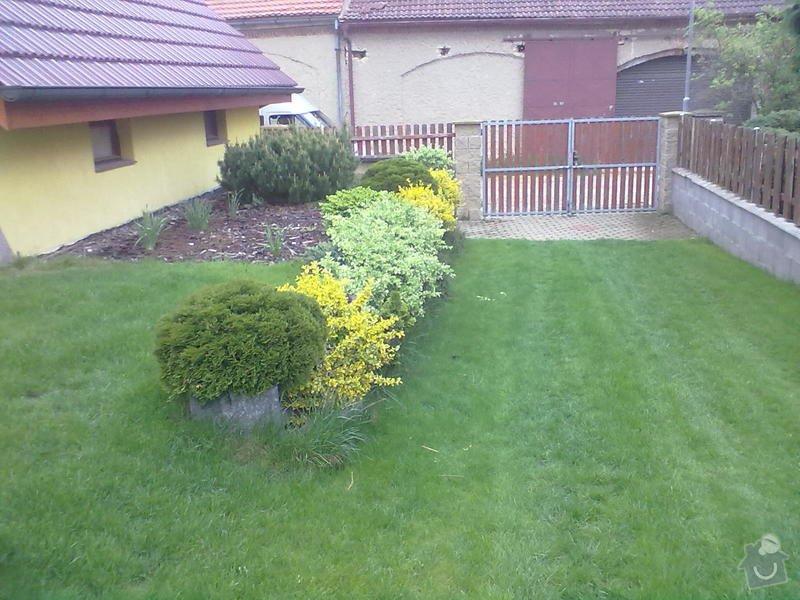 Realizace zahrady,návrh a montáž automatické závlahy: papez_051