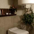 Rekonstrukce koupelny 11