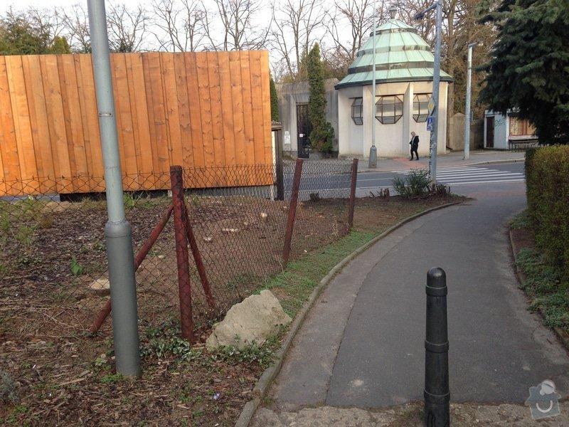 Úprava zahrady a dodělání plotu: tuje