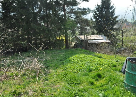 Vyčištění svahu zahrady