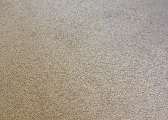 Vyčištění koberce cca 7,5 m2