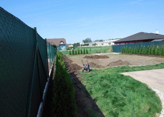 Zahrada - výsadba thuje