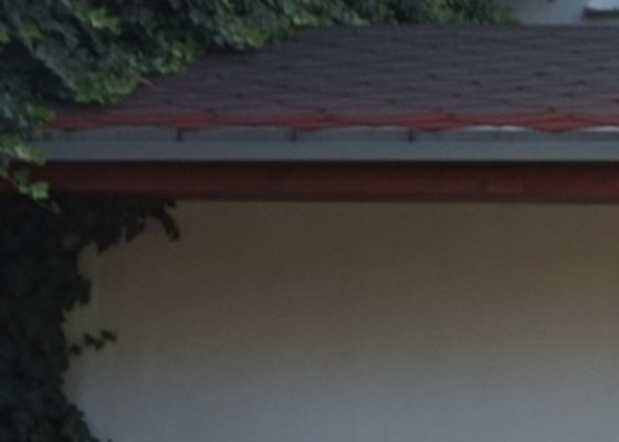 Kácení stromu, zrušení břečťanu z fasády a odvoz vzniklého odpadu