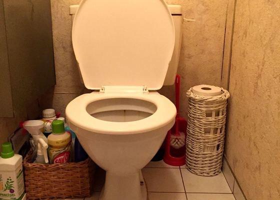 Instalatér - výměna WC.