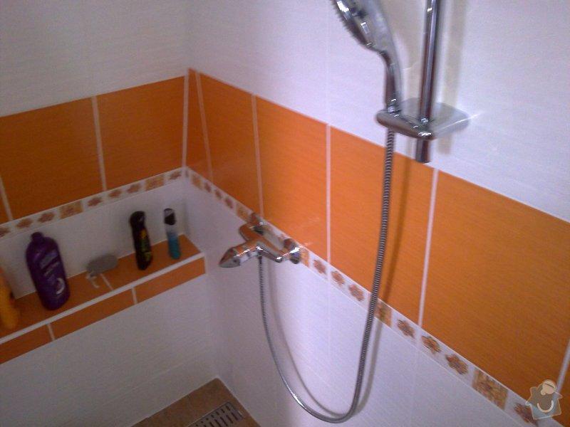 Rekonstrukce koupelny: 29012015259