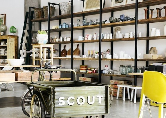 SCOUT-1771_(1)