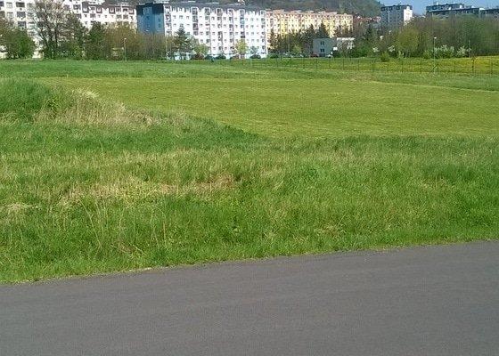 Sekání trávy