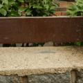 betonova_zidka_vycisteno
