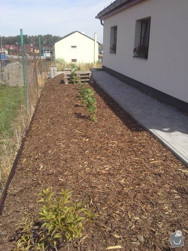 Navrh a realizace zahrady: navrh-a-nasledna-realizace-zahrady-realizace-kapkove-zavlahy_20150827_121150