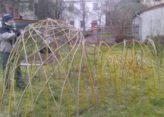 Stavba iglů a tunelu z vrbového proutí